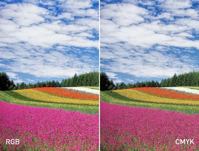 RGBにくらべ、CMYKの画像は少し色みが落ちている